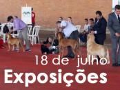 201506-Exposicoes01